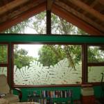 monstera-glass-windows